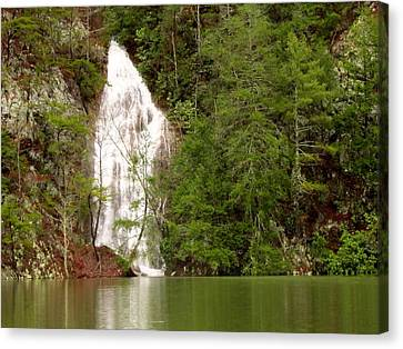 Little Laurel Branch Falls Landscape Canvas Print