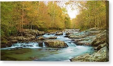 Little Pigeon River Flowing Canvas Print by Panoramic Images