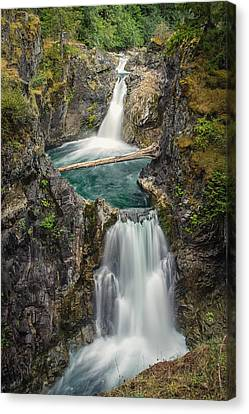 Little Qualicum Falls Canvas Print by Carrie Cole