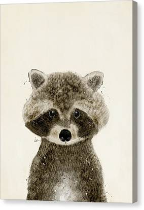 Little Raccoon Canvas Print by Bri B