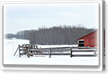 Little Red Barn Canvas Print by Donna Brown