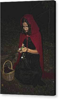 Little Red Riding Hood Canvas Print by Cherie Haines