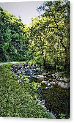 Babbling Canvas Print - Little River Road by Cricket Hackmann