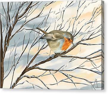 Little Robin Canvas Print by Veronica Minozzi