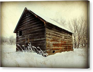 Little Shed Canvas Print by Julie Hamilton