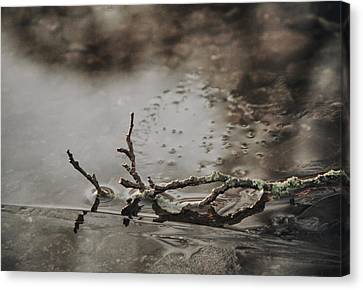 Gnarly Canvas Print - Little Thing by Odd Jeppesen