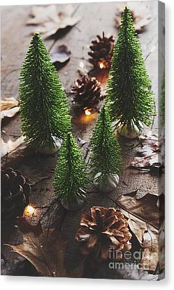 Canvas Print featuring the photograph Little Trees With Pine Cones And Leaves  by Sandra Cunningham