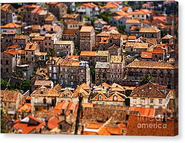 Little Village Canvas Print by Andrew Paranavitana