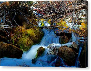 Little Water Fall Canvas Print by Kevin Bone