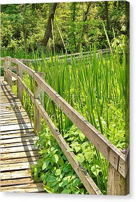 Canvas Print featuring the photograph Little Wooden Walking Bridge by Jean Goodwin Brooks