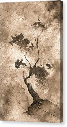 Little Zen Tree 873 Altered Canvas Print by Sean Seal
