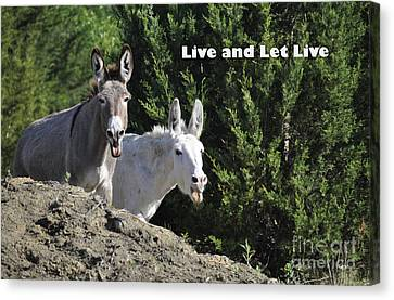 Live And Let Live Canvas Print by Cheryl McClure