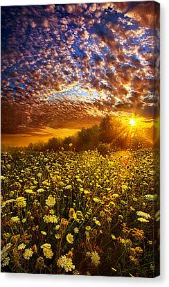 Live Every Moment Canvas Print by Phil Koch
