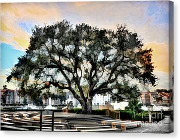 Live Oak Artistic Trendering Canvas Print by Dan Friend