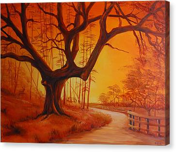Live Oak At Sunset Canvas Print by Rich Kuhn