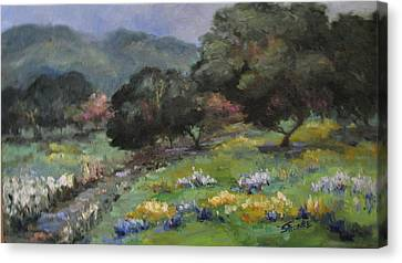 Live Oaks And Wildflowers Canvas Print