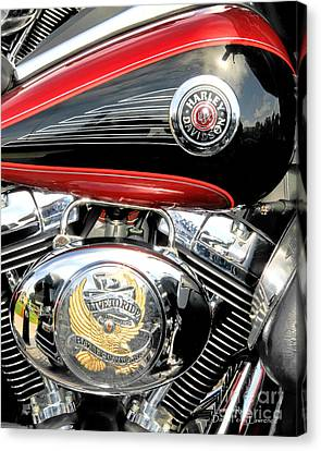 Canvas Print featuring the photograph Live To Ride  Ride To Live By David Lawrence by David Perry Lawrence