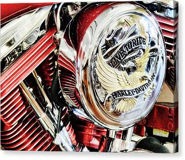 Live To Ride  Canvas Print by Saija  Lehtonen