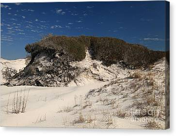 Lively Dunes Canvas Print by Adam Jewell