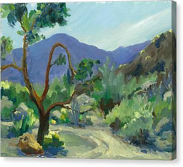 Stately Desert Tree - Spring Commeth Canvas Print by Maria Hunt