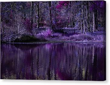 Living In A Purple Dream Canvas Print by Linda Unger
