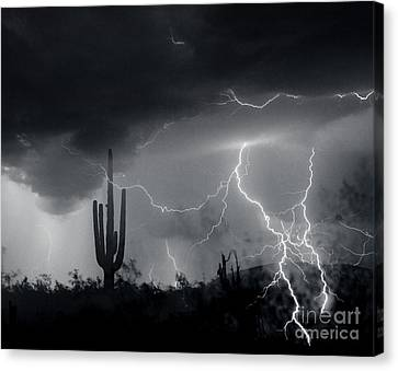 Canvas Print featuring the photograph Living In Fear by J L Woody Wooden