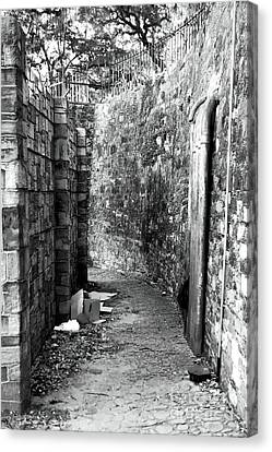 Living In The Alley Canvas Print by John Rizzuto