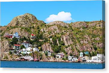 Living On The Edge Canvas Print by Barbara Griffin