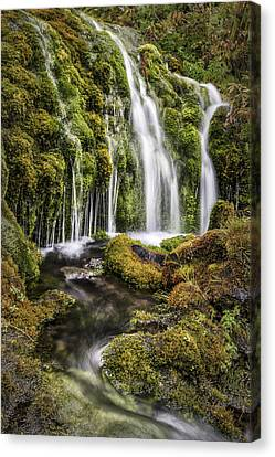 Living Water Canvas Print by Jon Glaser