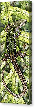 Lizard In Green Nature - Elena Yakubovich Canvas Print