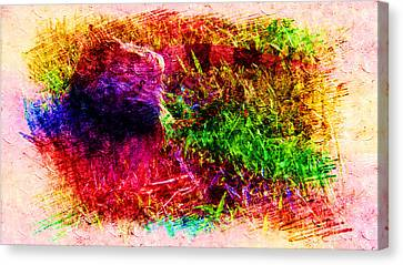 Lizard In Abstract Canvas Print