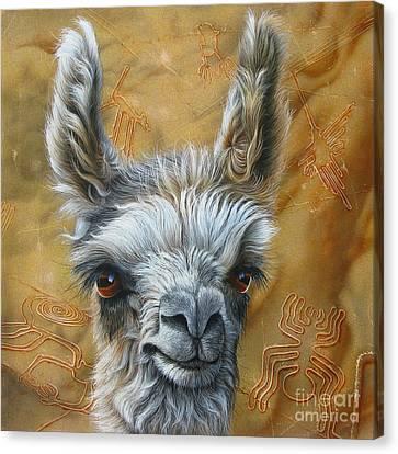 Llama Baby Canvas Print