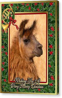 Llama Blank Christmas Card Canvas Print