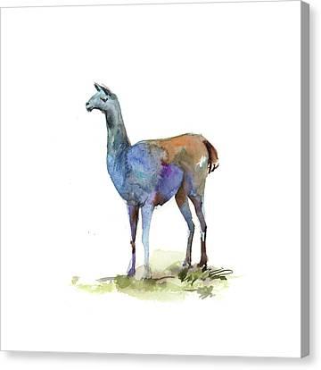 Llama Canvas Print - Llama I by Sophia Rodionov