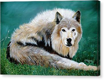 Lobo Canvas Print by Jean Yves Crispo