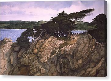 Lobos Lookout Canvas Print by Tom Wooldridge