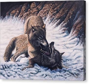 Lobos Canvas Print by Ricardo Chavez-Mendez