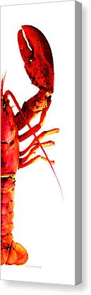 Lobster - The Right Side Canvas Print by Sharon Cummings