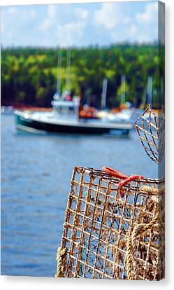 Lobster Trap In Maine Canvas Print by Olivier Le Queinec