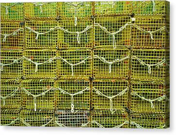 Lobster Traps, Rockport, Essex County Canvas Print by Panoramic Images