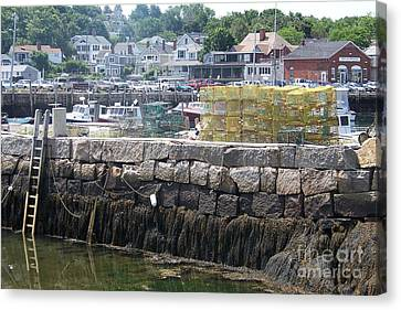 Canvas Print featuring the photograph New England Lobster by Eunice Miller