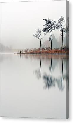Loch Ard Reflections Canvas Print by Grant Glendinning