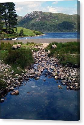 Loch Ba Canvas Print by Steve Watson