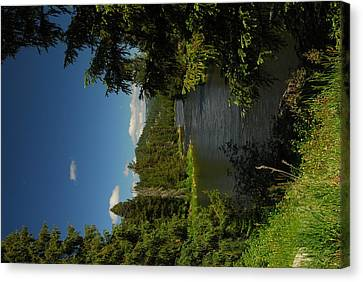 Lochsa River Overlook Canvas Print by Larry Moloney