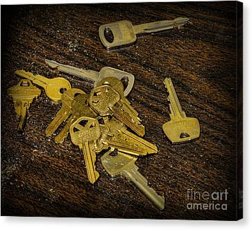 Locksmith - Rejected Keys Canvas Print by Paul Ward