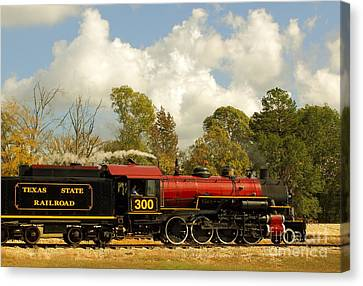 Locomotion Canvas Print by Robert Frederick