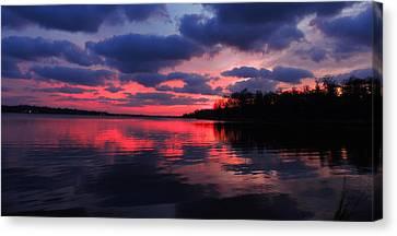 Locust Sunset Canvas Print by Raymond Salani III