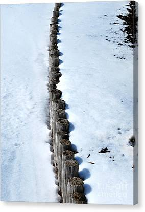 Log Fence In The Snow Canvas Print by Nancy Mueller