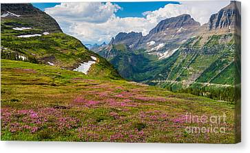 Reynolds Canvas Print - Logan Pass Panorama by Inge Johnsson
