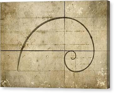 Logarithmic Spiral Canvas Print